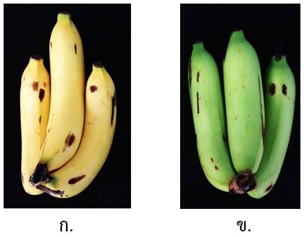 4 banana-4