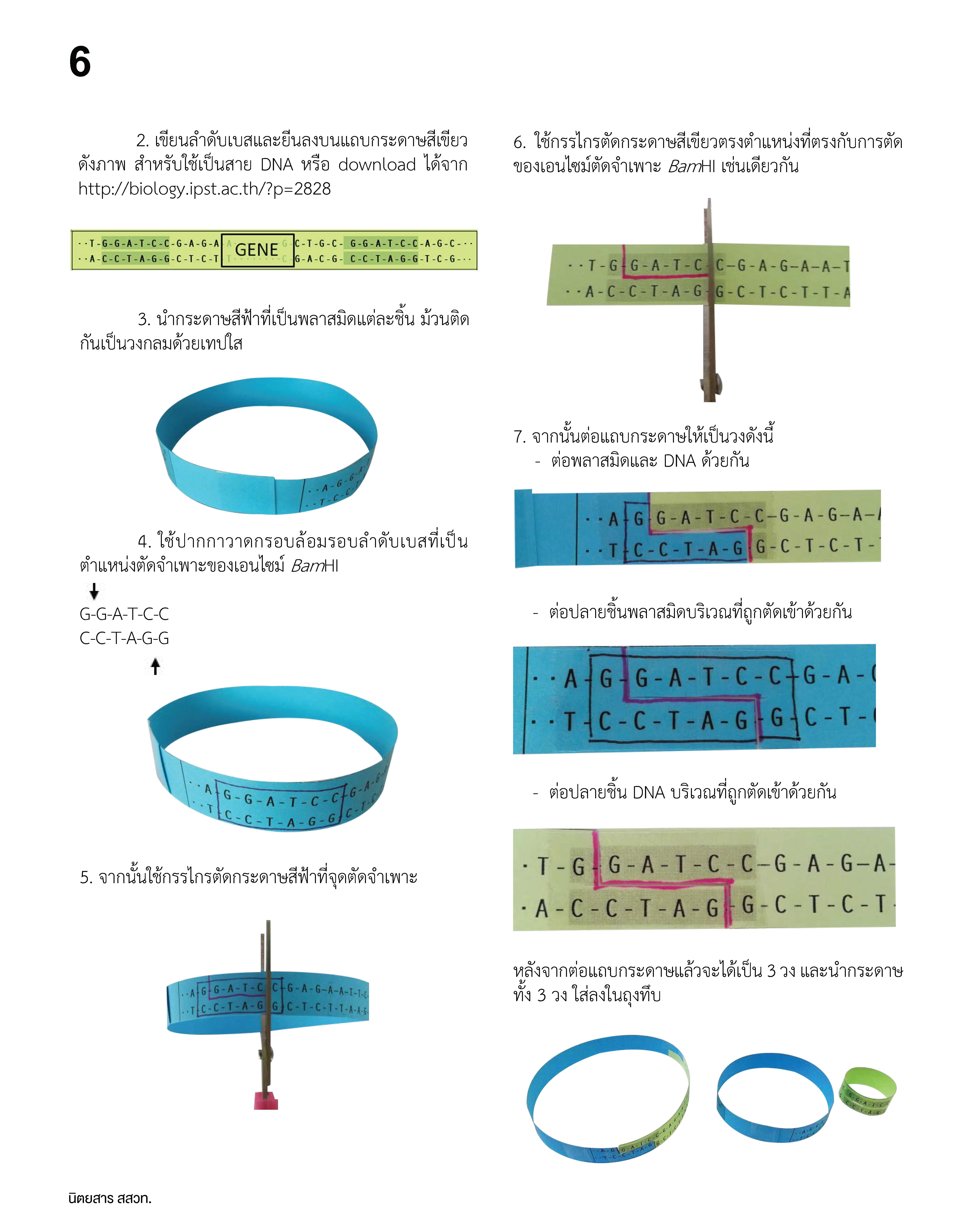 การโคลน DNA_Page_5
